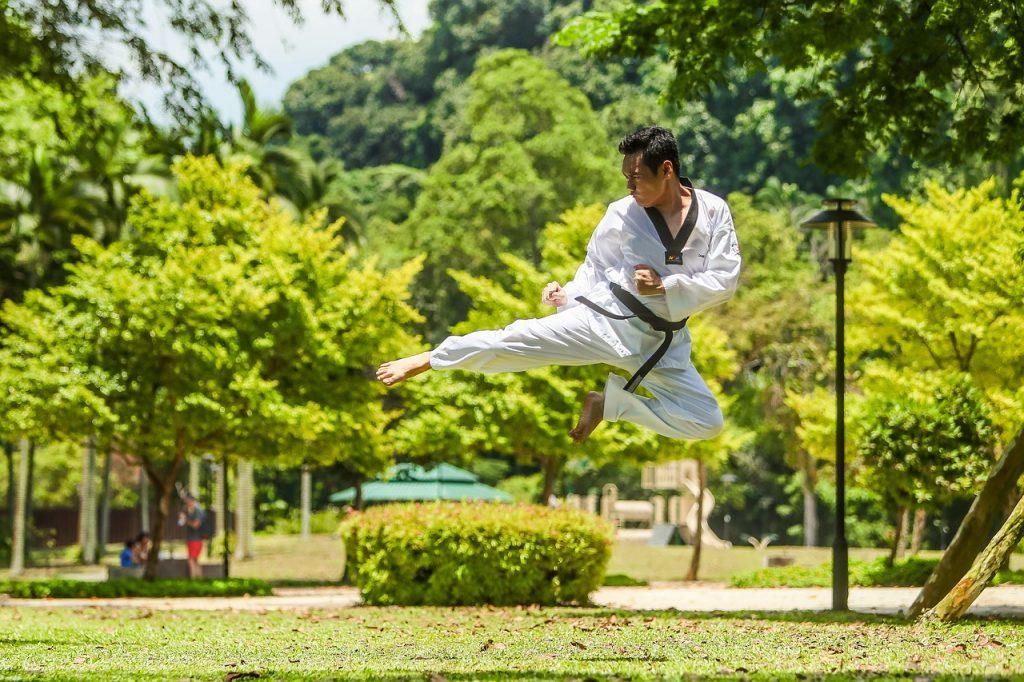 kungfu-demonstration-arts-martiaux