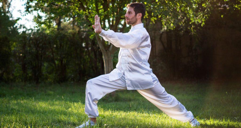 pratique-taiji-chinois-art-martial