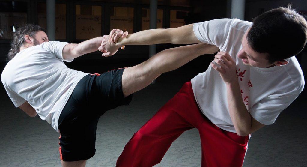 combat-kung-fu-coup-de-pied